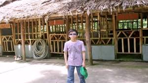piggery house design in the philippines youtube piggery house design in the philippines