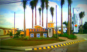 townhouse in taguig city myhomejoy
