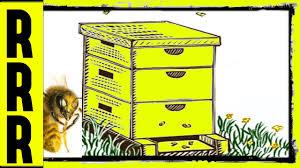 bee beehive buzz 8 hours of bee sound effect u003d humming buzzing