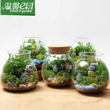 Clear Glass Vases With Lids Aliexpress Com Buy O Roselif Micro World Ecological Transparent