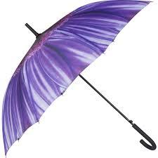 rain or shine stick umbrella purple big w