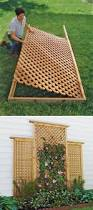 20 awesome diy garden trellis projects diy wood woods and gardens