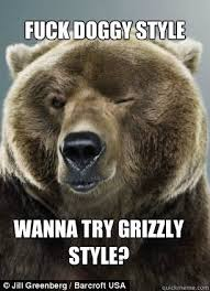 Sad Bear Meme - luxury bear hey girl memes for outdoorsy women wallpaper site
