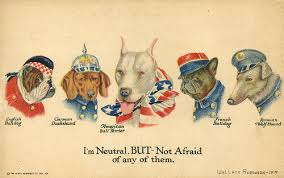 l american pitbull terrier a p b t saved by dogs american pitbull terriers and defamation over time