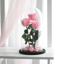 rose in glass three beauty and the beast rose huge enchanted rose rose
