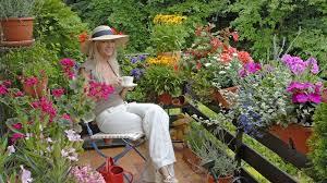 balkon grã npflanzen balkonpflanzen blumen und pflanzen für die balkonkästen und