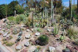 Quail Botanical Gardens Free Tuesday Quail Botanical Gardens Dave S Garden