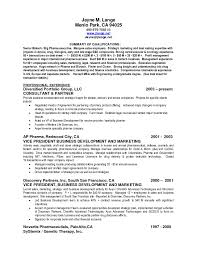 executive summary resume example resume examples and free resume