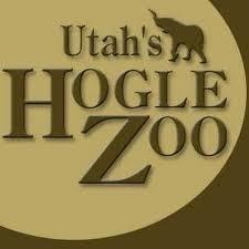 Zoo Lights Utah Hogle Zoo by Utah U0027s Hogle Zoo Youtube