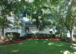 Backyard Trees For Shade - lower cooling bills and much more with shade trees al u0027s plumbing