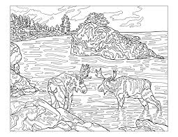 coloring download yellowstone national park coloring pages