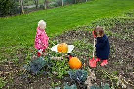 best mulches to use in the vegetable garden veggie gardener