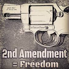 www youtube com damenroy 2ndamendment american freedom