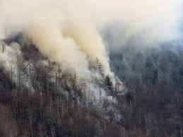 Wild Fires Near Merritt by Dollywood Employee Finds Burned Bible Page After Wildfires