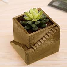 modern wood staircase design cube planter box small succulent plant c