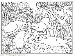 coloring pages spring watch animals birds free printable 461490
