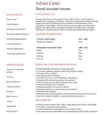 student nurse intern resume best essay on social studies essay
