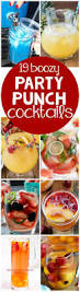 best 25 alcoholic punch recipes ideas on pinterest mixed drinks