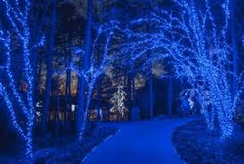 Garvan Gardens Christmas Lights Holiday Lights Return To Garvan Woodland Gardens Travel Arkansas