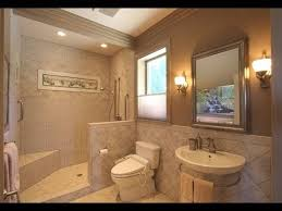 Home Design Ideas Bathroom Handicapped Potty And Shower - Bathroom designs for handicapped