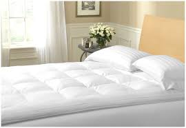 bed bug mattress cover target mattress bed bug mattress cover target 41726 mattress cover bed