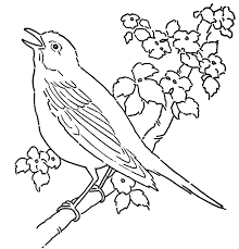 coloring page bird 4141