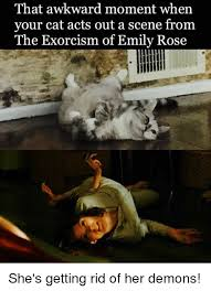 Exorcism Meme - that awkward moment when your cat acts out a scene from the exorcism