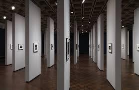 manual of curatorship medium format camera art blart