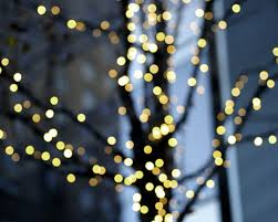 lighted tree photography set grey blue yellow golden wall decor
