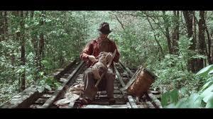 video u2014 the pine barrens