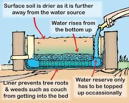 Advantage Of Raised Garden Beds - the rosenbaums u0027 garden michigan gardening