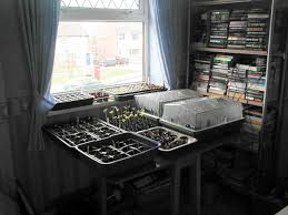 start your seeds indoors for a jump on spring planting allotment