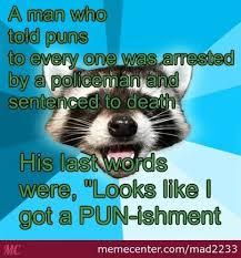Meme Generator Raccoon - coolest bad pun raccoon meme kayak wallpaper