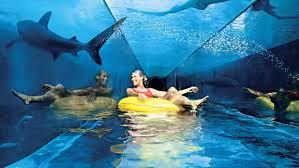 dubai water parks splash slide show