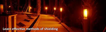 is led light safe sea turtle lighting turtle friendly lights fwc approved lighting