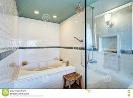 blue bathroom interior with white tile trim wall glass cabin