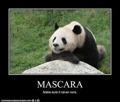Panda Mascara Meme - cheezburger page 5 cheezburger image 2292706 by yawal15 on