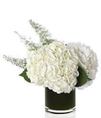 white hydrangea bouquet vanilla hydrangea bouquet at from you flowers