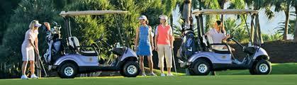 yamaha golf cart paint colorrite