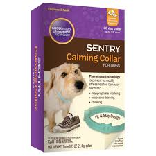 calming tools 9 products to help with your dog u0027s anxiety