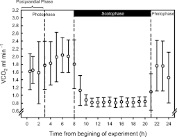 House Measurements Physiological Responses To Food Deprivation In The House Sparrow