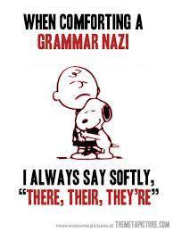 Grammar Correction Meme - grammar police acceptable vs non acceptable ignorance alienredqueen
