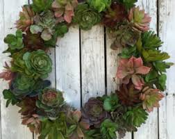 succulent wreath etsy
