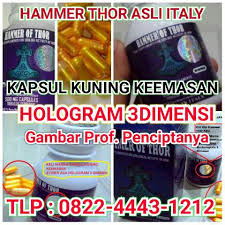 hammer of thor herbal italy klinikobatindonesia com agen resmi