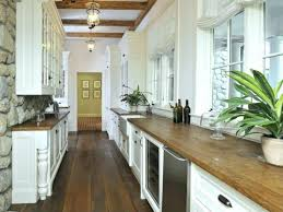 kitchen ideas for galley kitchens small galley kitchen remodel ideas subscribed me