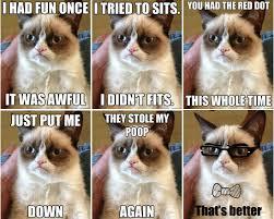 Memes Of Grumpy Cat - grumpy cat memes humormeetscomics
