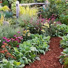 it comes naturally advice on growing an organic garden u2013 gardens