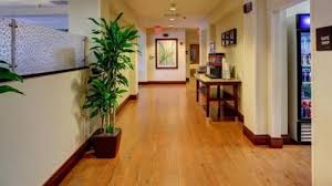 floor and decor fort lauderdale beautiful floor and decor fort lauderdale kls7 krighxz