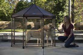 Dog Kennel Flooring Outside by Finding The Best Outdoor Dog Kennel For Your Pet Advantek Marketing