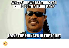 Blind Meme - whatsthe worst thing you could do to a blind man leave the plunger